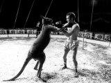 Alan Minter vs the Hopping Aussie