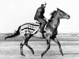 Red Rum Pictured During His Training Gallop on Southport Beach