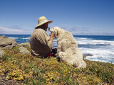 Man and His Italian Sheep Dog Sit Overlooking the Ocean