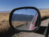 Cattle on a Dirt Road are Reflected in the Rear View Mirror of a Car