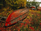 An Upturned Rowboat Among Red Osier Dogwoods in Fall Foliage