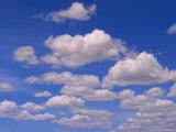 Cumulus Clouds Above the Masai Mara National Reserve