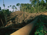 Oil Pipeline Running Through Amazon Basin Forests