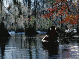 Park Ranger Canoeing Under Cypress Trees Draped with Spanish Moss