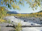Scenic View of McCarthy Creek in McCarthy  Alaska