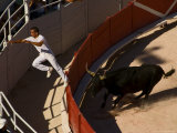 Man Jumping Fence During Bull Race at Les Arenes Roman Amphitheatre