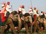 Elephant Polo at the Elephant Festival