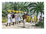 Jamaican Women Carrying Bananas to a Seaport  1800s