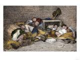 Homeless Street Boys Sleeping in an Alley in New York City  1890s