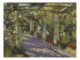 Sun Dappled Garden with Trellis