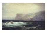 Tintagel Coast  1884