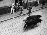 Running of the Bulls for Fiesta of San Ferman