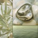 Zen Elements IV