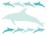 Seagreen Dolphin Family