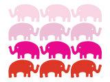 Pink Elephant Family