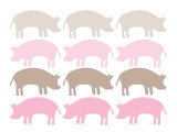 Pink Pig Family
