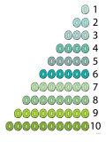 Green Counting Kiwi