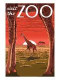 Visit the Zoo  Giraffe Scene