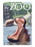 Visit the Zoo  Hippo Scene
