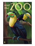 Visit the Zoo  Tucan Scene