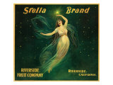 Riverside  California  Stella Brand Citrus Label