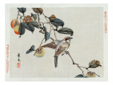 Bird Perched on a Branch from a Fruit Tree  Japanese Wood-Cut Print