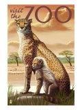 Visit the Zoo  Cheetah View