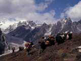 Yak Drivers Above the Kangshung  Tibet