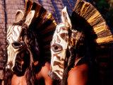 Zulu Zebra Masked Dancers  South Africa
