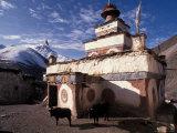 Stupa With Yaks at Dolpo, Nepal Papier Photo par Vassi Koutsaftis