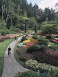 Sunken Garden at Butchart Gardens  Vancouver Island  British Columbia  Canada