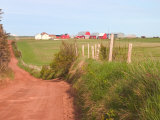 Country Road and Farm  Prince Edward Island  Canada