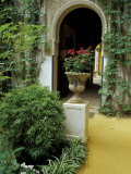 Planter and Arched Entrance to Garden in Casa de Pilatos Palace  Sevilla  Spain