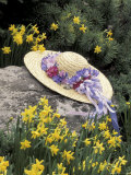Hat and Daffodils  Louisville  Kentucky  USA