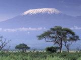 Mount Kilimanjaro  Amboseli National Park  Kenya