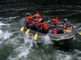 Whitewater Rafting in Salmon River  Idaho  USA