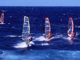Wind Surfers on the Coast of Maui  Hawaii  USA