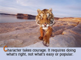 Character Takes Courage