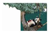 Panda And Child