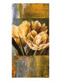 Floral Radiance II