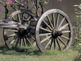 Old-Fashioned Rustic Wagon in Rural Field