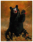 Black Bear with Berries Reproduction d'art par H. Kendrick