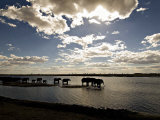 Elephant Herd  Botswana