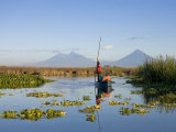 Fisherman  Agua and Pacaya Volcanoes in the Background  Monterrico  Pacific Coast  Guatemala