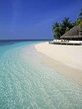 Tropical Beach  Maldives  Indian Ocean