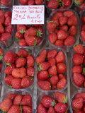 Strawberries at Market  Sarlat  Dordogne  France