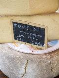 Cheese at Market  Sarlat  Dordogne  France  France