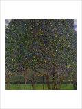 Poirier Giclée par Gustav Klimt