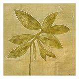 Leaf Fresco III