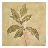 Leaf Fresco V